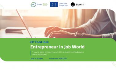 Entrepreneur in a Job World