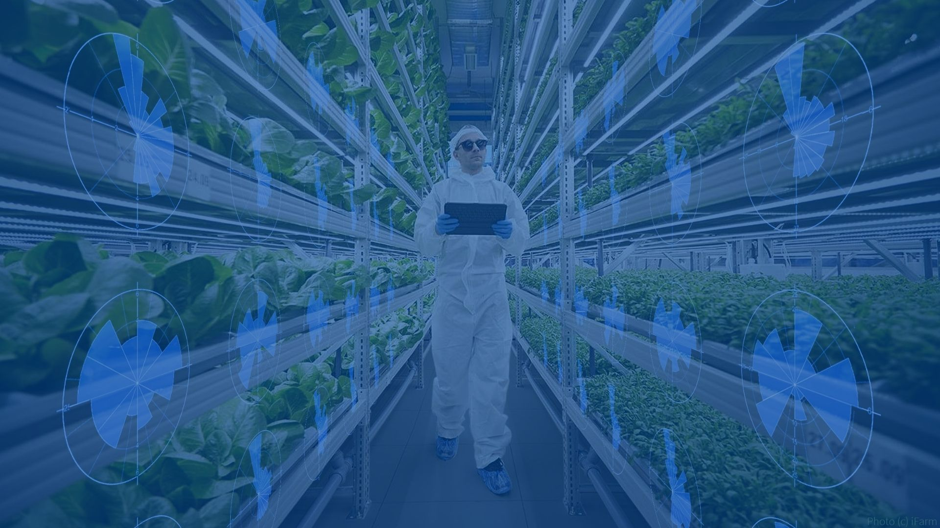 Seedbed Incubator 2021 Cohort