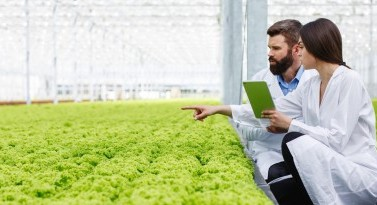 Connecting agrifood experts across Europe and beyond