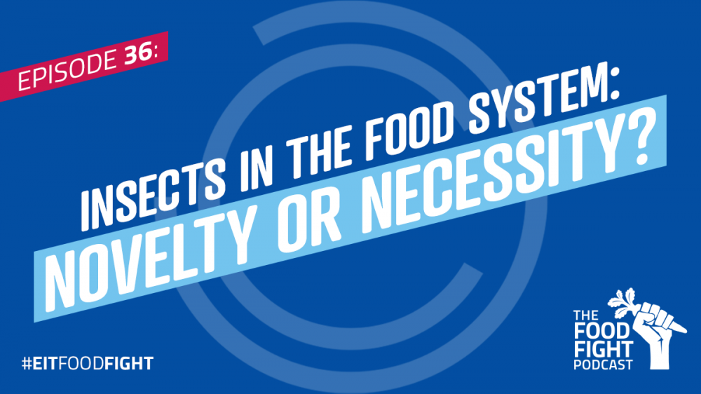 Insects in the food system: novelty or necessity?