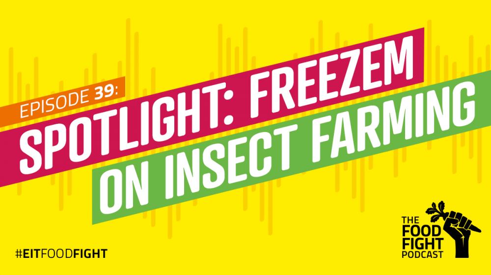Spotlight: Freeze-em on insect farming