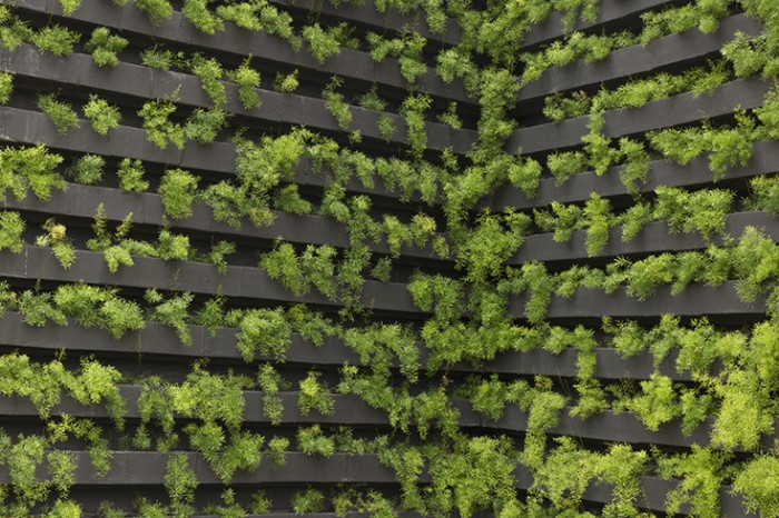 Feeding the World and the Role of Vertical Farming