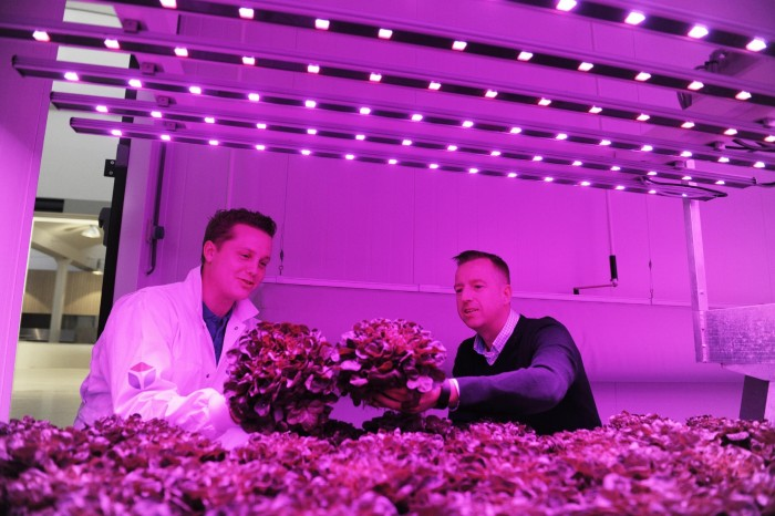 The origins of indoor vertical farming