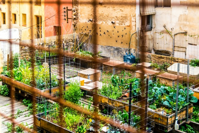 Sustainably feeding the world in 2050: Are efficiency and equity the answer?