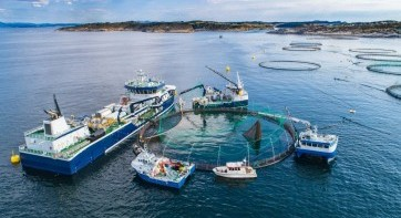"""EIT Food to launch open call """"Sustainable Aquaculture"""""""