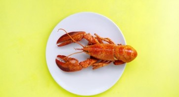 Would you help us obtain a better utilization of the seafood side-streems?