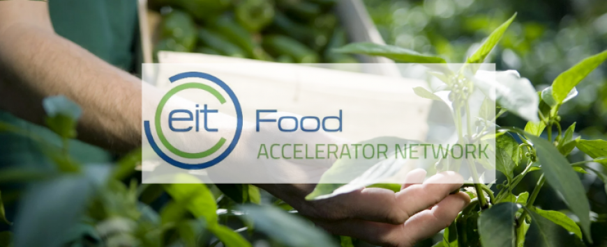 EIT Food Accelerator Network announces second cohort of agrifood startups
