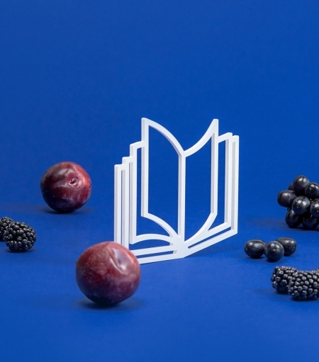Our RIS education programmes