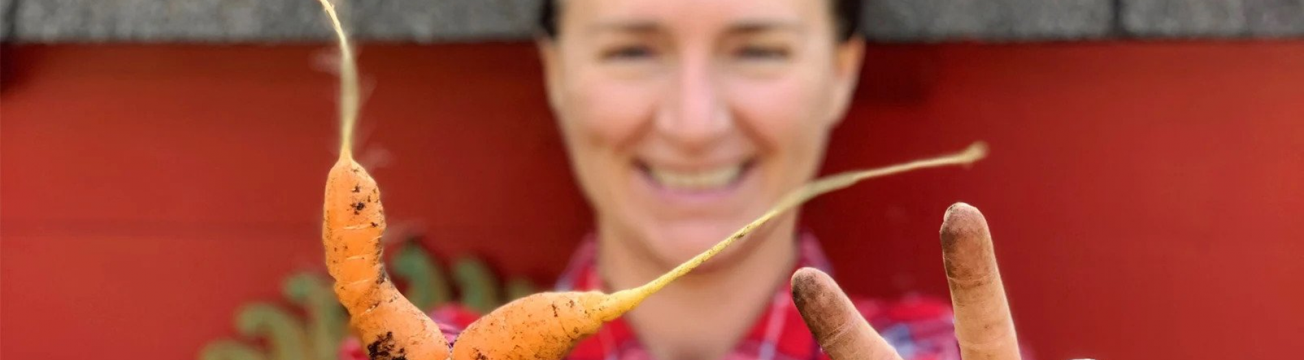 From Waste to Value: How to Tackle Food Waste