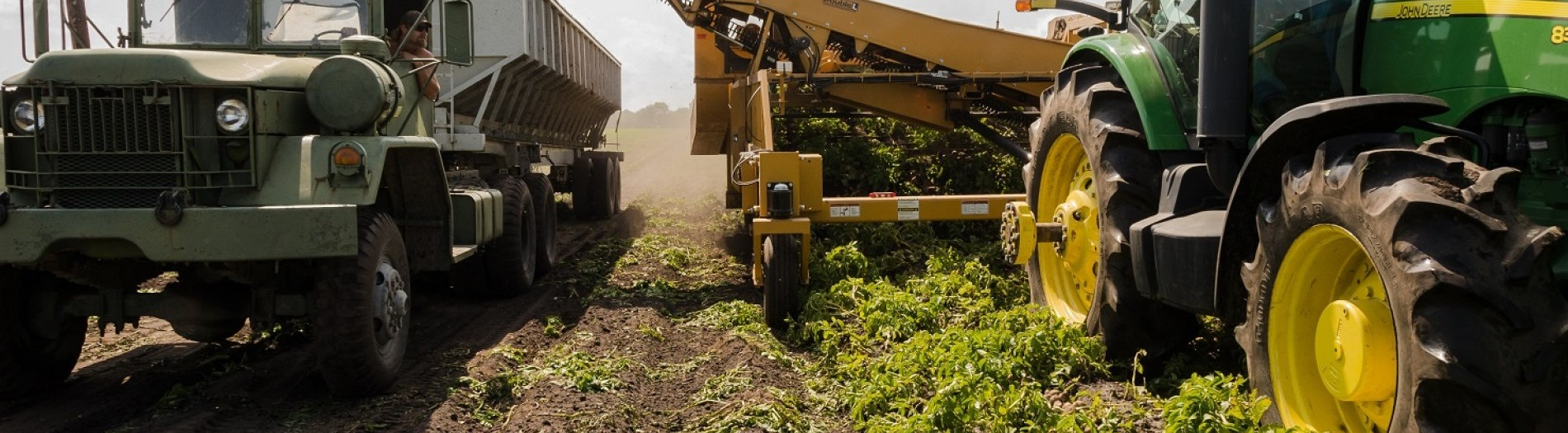 The Regenerative Agriculture Revolution