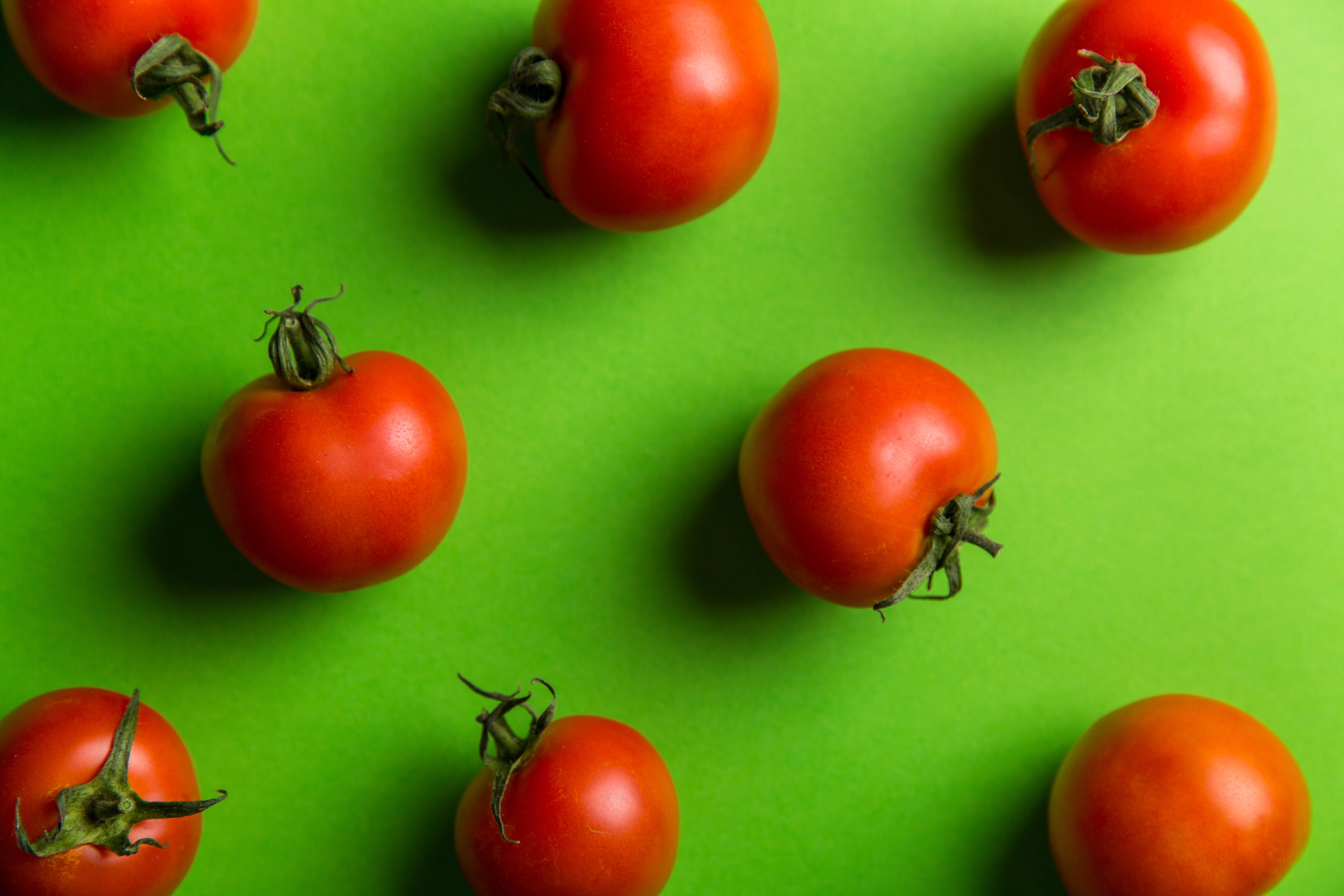 Increasing nutritional value (bio-stimulated) of selected performant tomato varieties to be cultivated in areas with temperate climate
